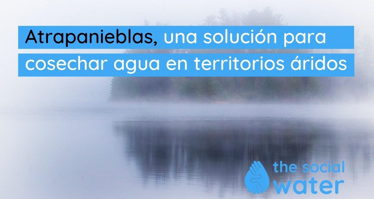 Atrapanieblas, una solución imaginativa para cosechar agua en territorios áridos.