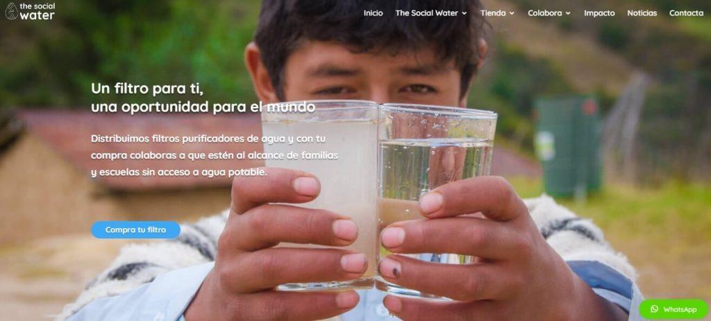 Inicio-web-TSW
